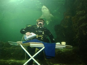 Underwater extreme ironing with a shark.